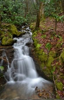 Cascade below Backbone Falls, Johnson County, TN.
