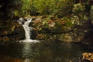 Broad Shoals Falls, aka California Falls. Washington County, TN