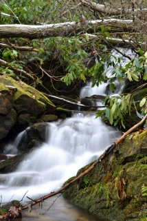Ramsey Creek Falls, Jonesborough, TN
