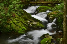 Rocky Fork Cascades, Rocky Fork State Park, TN