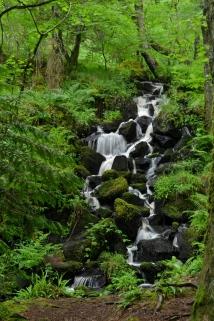 Aros Park Small Falls, Isle of Mull, UK