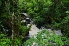 Tobermory Falls, Isle of Mull, UK