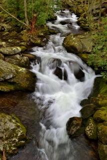 Lynn Camp Prong, Great Smoky Mountains