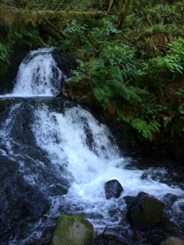Shepperd's Dell Falls, Columbia River Gorge, Oregon