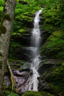 Little Falls Branch, NC