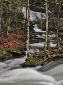 Middle Prong, Great Smoky Mountains, TN.