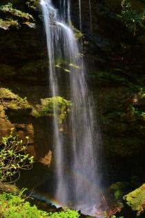 White Oak Sinks, Great Smoky Mountains, TN