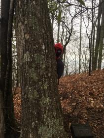 Deadpool on the mountain