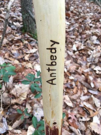 My hiking stick