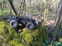 RC car found in the woods