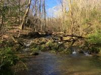 Rock Springs Branch