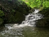 Cow Pie Falls (feeding into Watauga River)