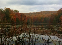 Fall colors reflected in Bay's Mountain reservoir.
