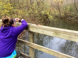 Mrs. Jack taking photos of the blue heron