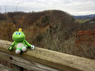 Enjoing the view from Copper Hill Overlook