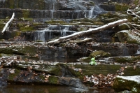 Cabin Creek Falls, Washington County, VA