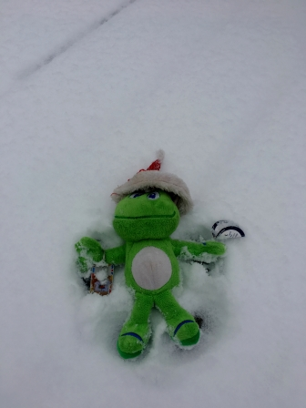 Signal wanted to get in on the snow angel fun.