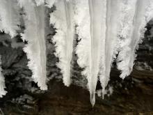 Fuzzy icicles.