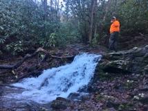 Catbird Creek, Buffalo Mountain Park, Johnson City, TN