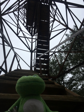 """Signal says, """"That's a long way up!"""""""