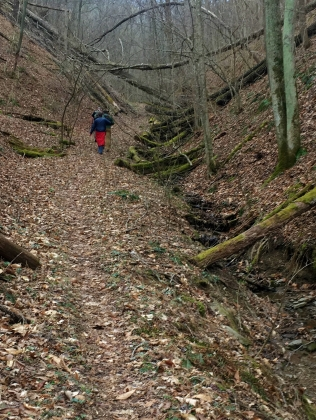 Heading up Cross Ridges Trail